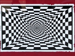 This Photo is a perfect example of space. Even though it is 2D it makes an  eye hurting Illusion. Look around the image and then slowly go into the  middle.
